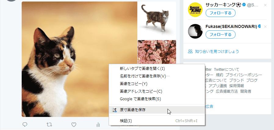 Twitter 原寸びゅー